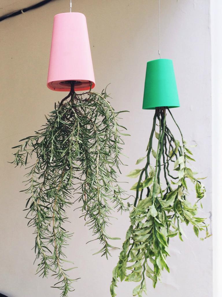 loving-boskke-sky-planters-owloook-1